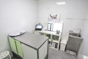 Gecko Clínica Veterinaria